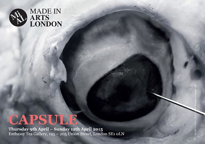 Capsule: Emerging Talent In Third Exhition from Made in Arts London
