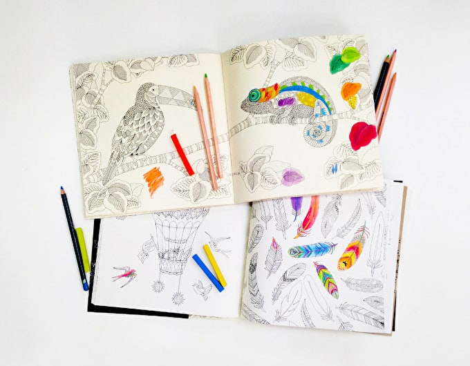 Top tips for Exploring the Possibilities of Colouring In Books for Adults