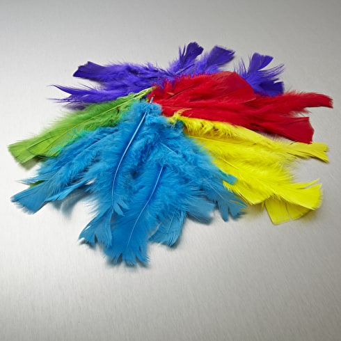 Craft Planet Turkey Flats Feathers Approx. 7g