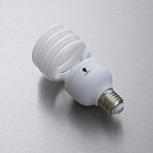The Daylight Company 32W Energy Saving Bulb