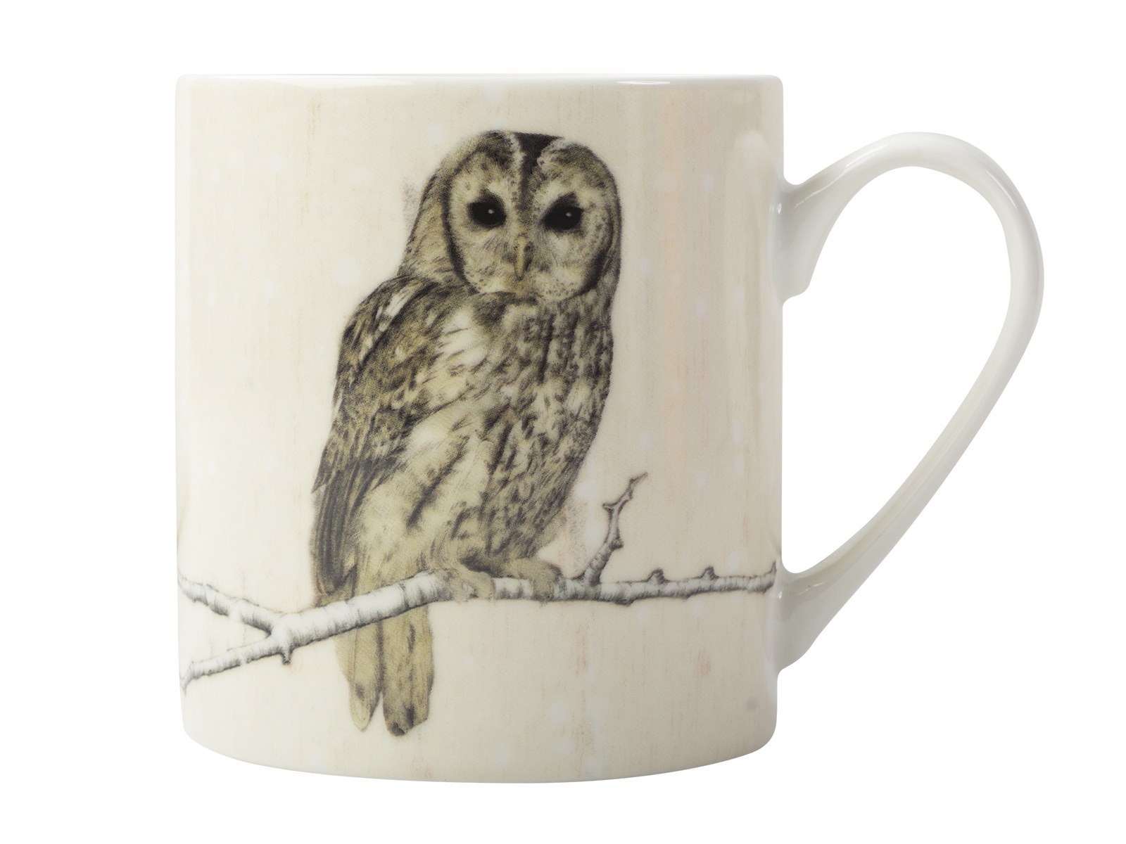 Creative Tops Snow Scenes Owl Can Mug