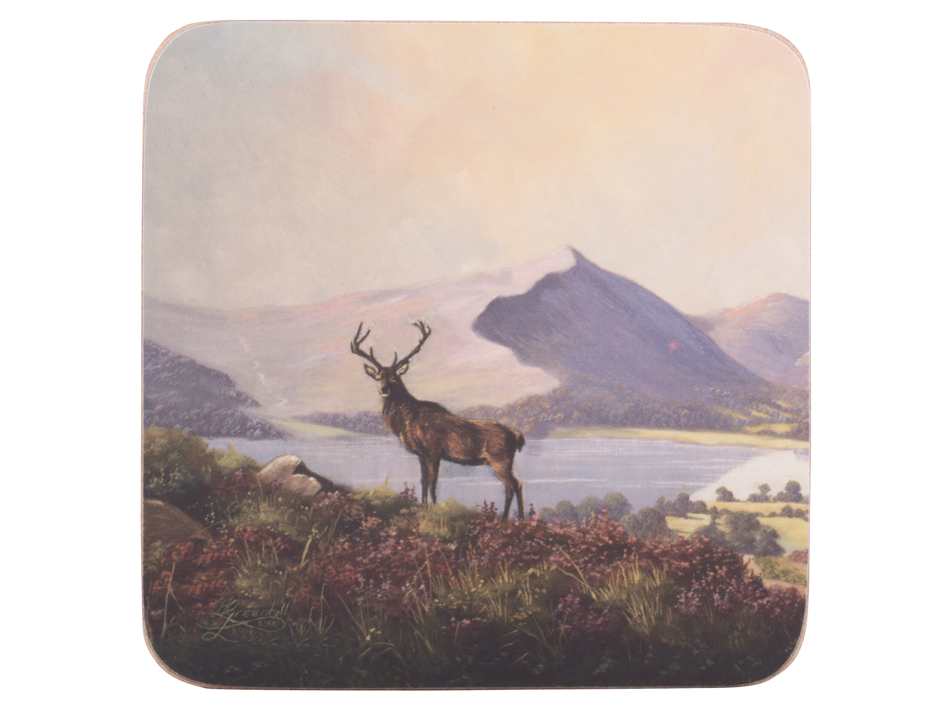 Creative Tops Highland Stag Pack Of 6 Premium Coasters