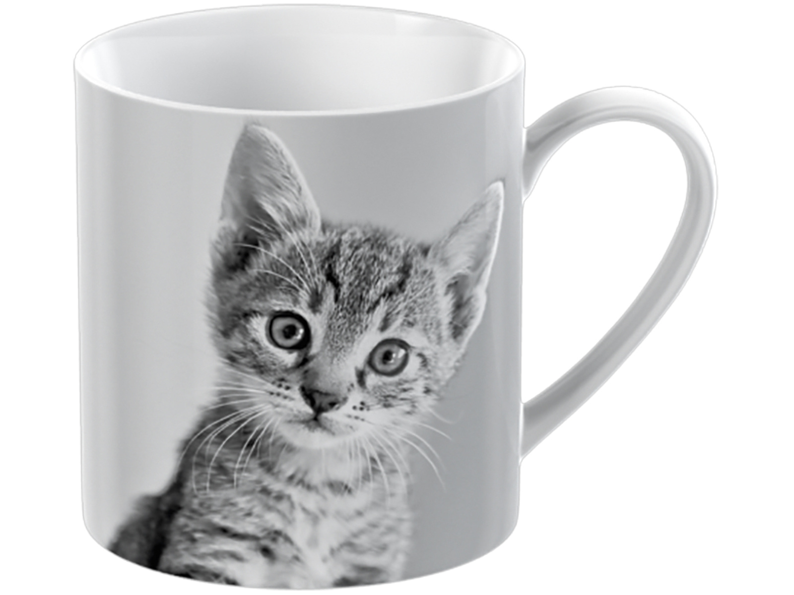 Creative Tops Pet Corner Kitten Can Mug