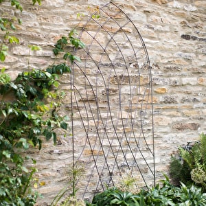 Barrington Arch Trellis