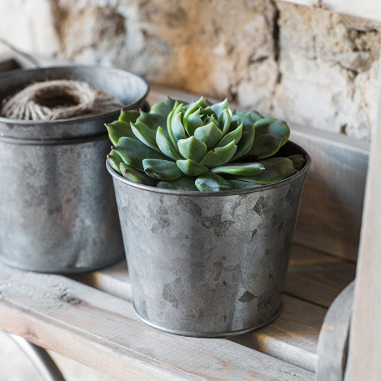 Galvanised Herb Pot | Garden Trading