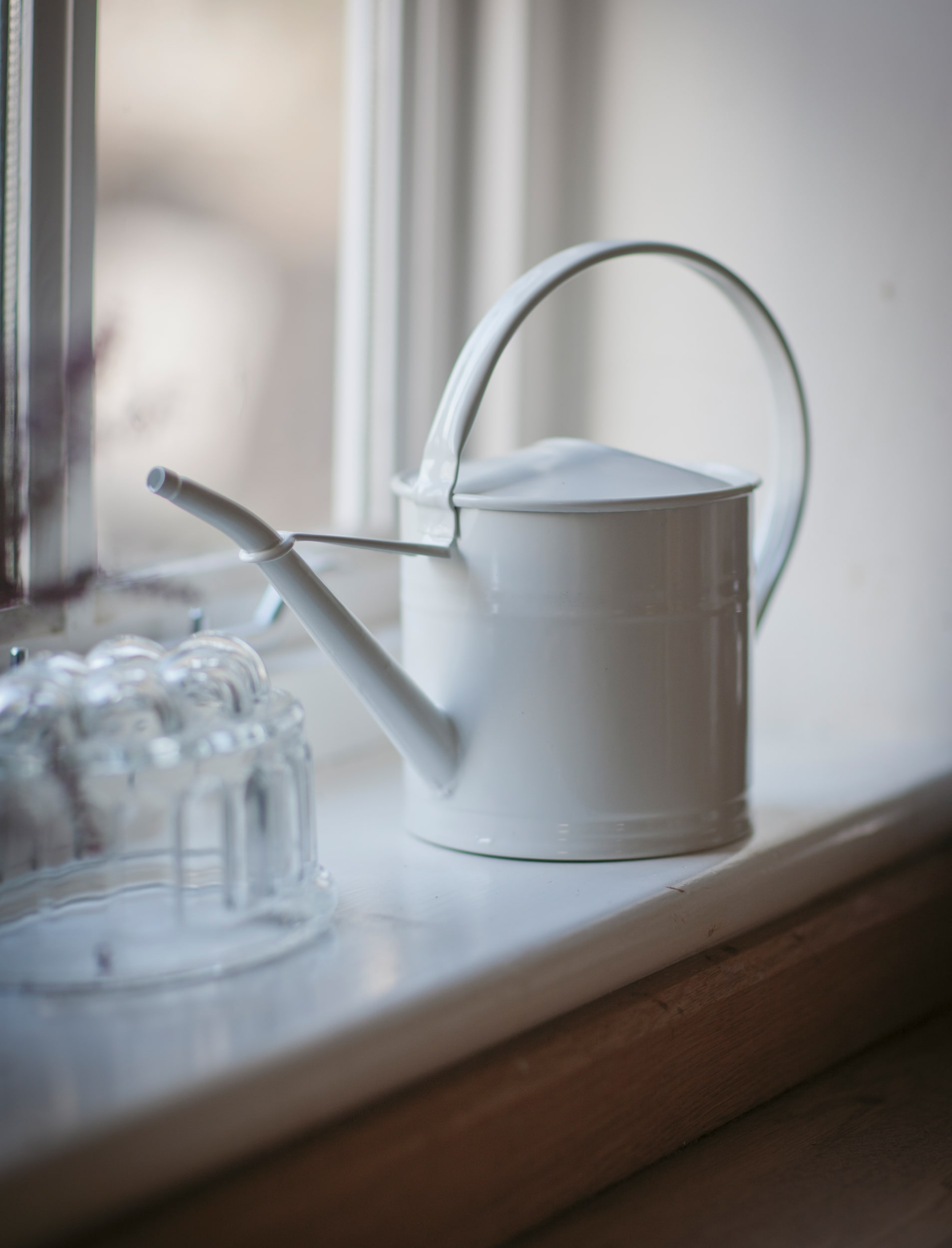 Galvanised 1.5L Watering Can in White  | Garden Trading