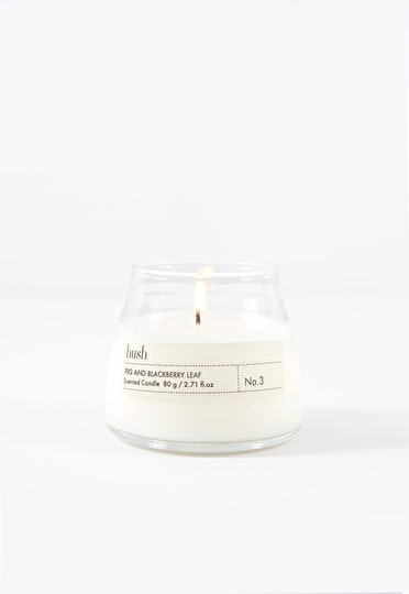 Fig & Blackberry Leaf Candle 80g