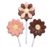 Sweetly Does It Silicone Chocolate Flower Lollipop Mould