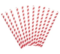World of Flavours Stateside Pack of 12 Paper Straws