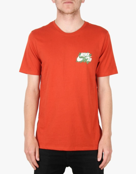 Nike SB Dri-FIT Raccoon Fern T-Shirt - Cinnabar/Sail