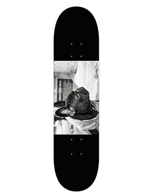 Route One Frenchie Team Deck - 8.125""