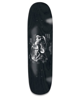 Grizzly Anatomy Cruiser Deck - 8.375