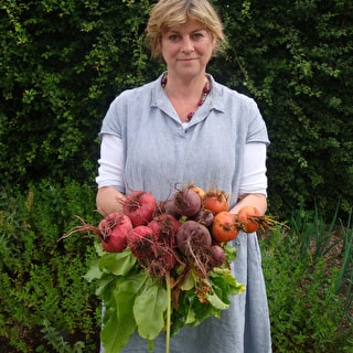 Beetroot Collection