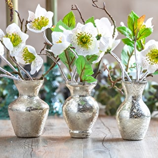 Everlasting Hellebore Sprays