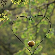 Heart Shaped Bird Feeder