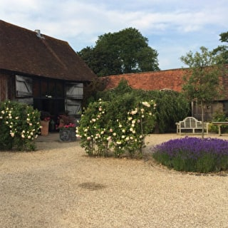 Magnificent Pots at Bix Manor Barn, Oxfordshire