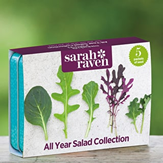 All Year Salad Seed Tin Collection