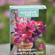 Harlequin Sweet Pea Seed Collection
