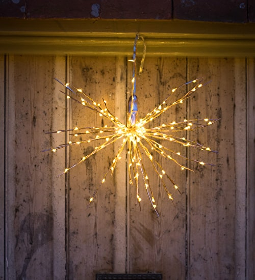 Copper Allium Light