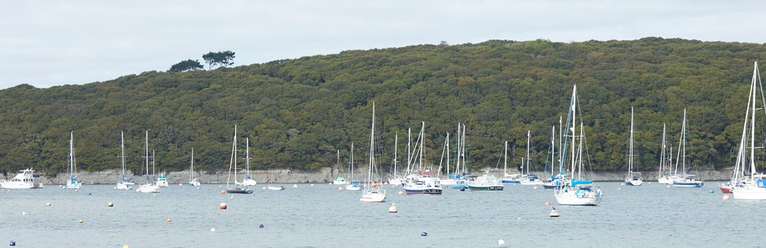 Scenic photo of Sailing boats on the Helford.