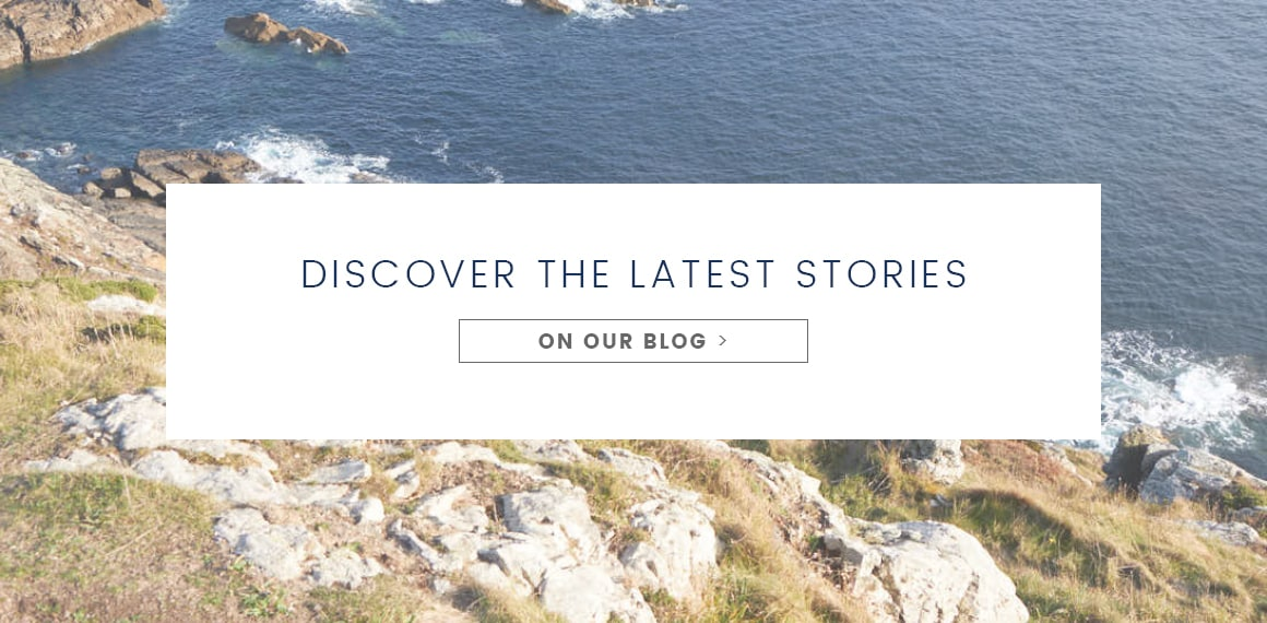 Discover the latest stories