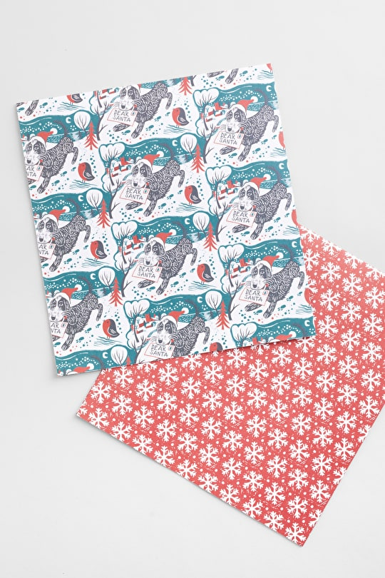 Wrapping Paper, Illustrated By Our Seasalt Arists  - Seasalt Cornwall