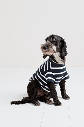 Doggy Sailor Shirts For Four Legged Fashionistas - Seasalt
