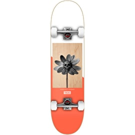Tricks Little Skull Complete Skateboard - 7.87