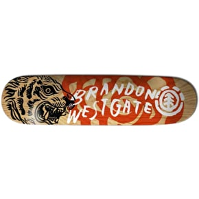 Element Sketchbook Skateboard Deck - Westgate 8.1