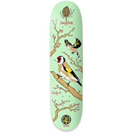 Drawing Boards Seasonal Birds - Goldfinch Skateboard Deck
