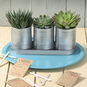 Gardening Inspired Wrapping Paper