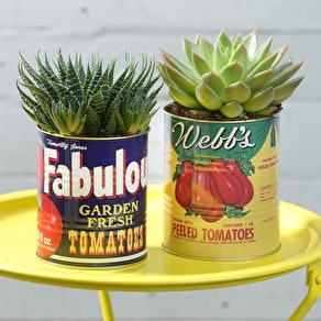 Set of 2 Retro Tins